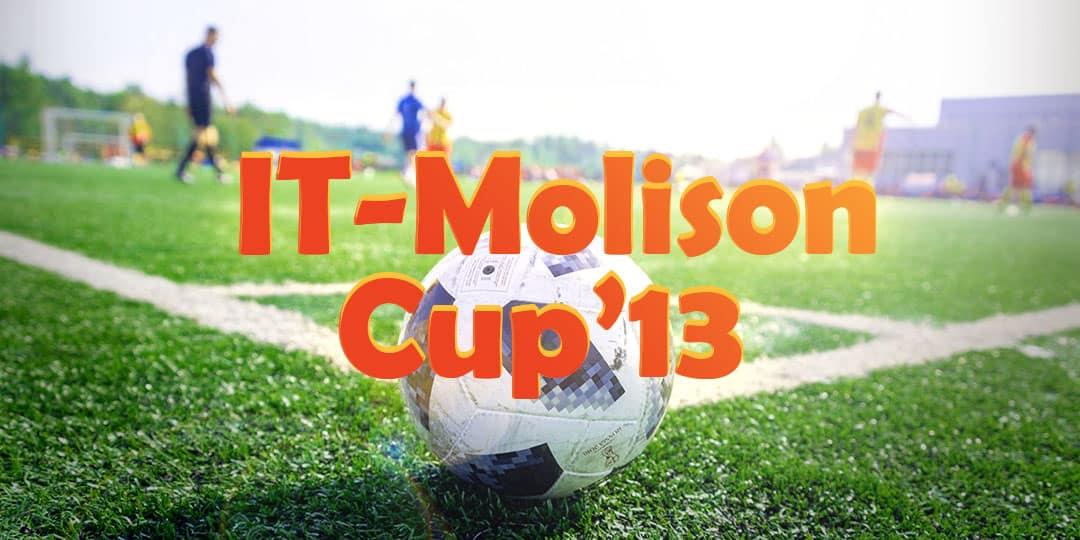 чемпион IT-Molison Cup'13