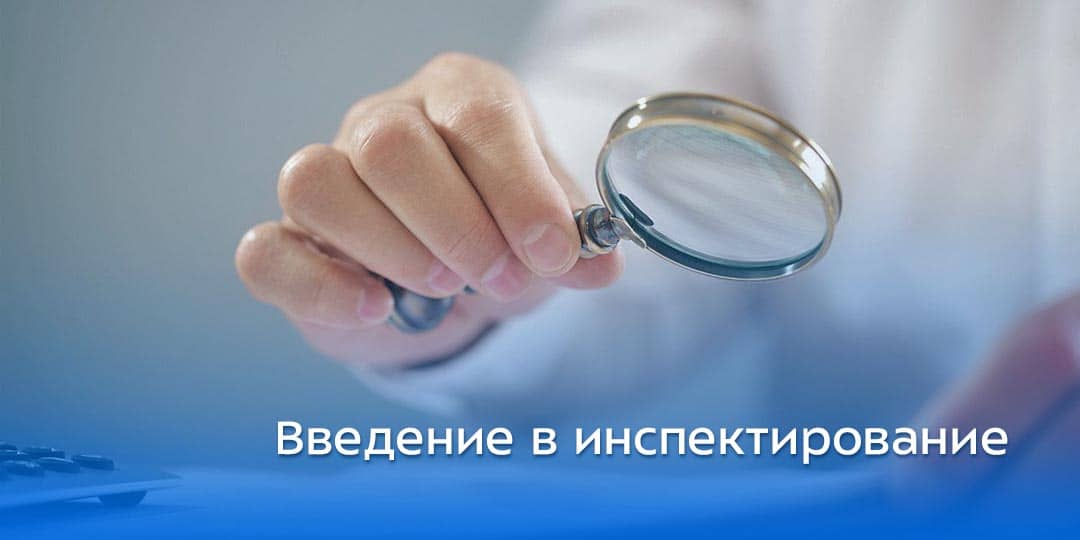 Введение в Инспектирование с учетом факторов риска