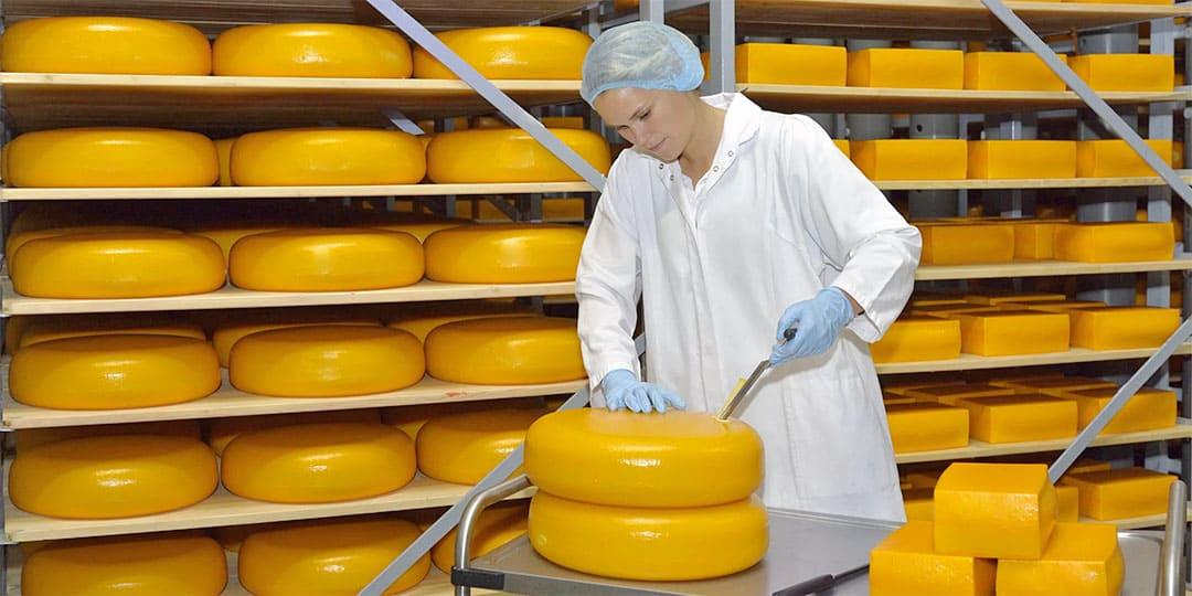 Автоматизация управления производством в молочной промышленности